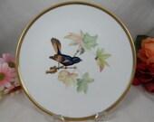 "1960s Hutschenreuther Audubon Salad Plate ""Redstar"" Bird Absolutely Delightful"
