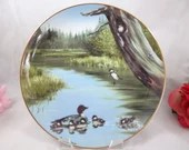 1983 Maynard Reece Common Goldeneye Ducks Collector Plate Limited Edition - The Swimming Lesson