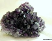 Amethyst Crystal, Amethyst Cluster for Stress Relief ~1506