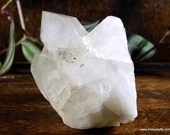 Lemurian Clear Quartz Crystal with Chlorite Cluster Reiki Crystal~1649