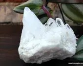 Clear Quartz Cluster Crystal with Points Reiki Healing Crystals ~357
