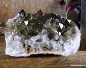 Smoky Quartz, Lemurian Smoky Quartz Cluster ~1799