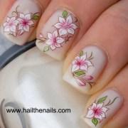 pink & white lotus flower nail