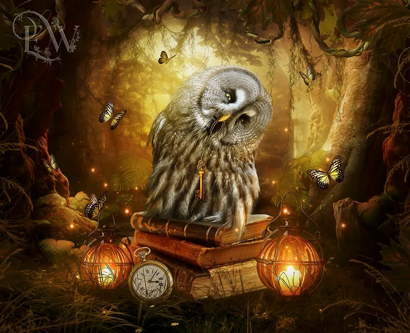 Fall Owl Wallpapers Eule Kunstwerk Eulen Print Fantasie Eule Digitale Kunst Etsy
