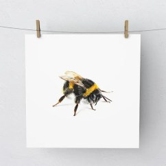 Bumble Bee Diagram Label The Following Of Respiratory System Etsy Print Artwork Picture
