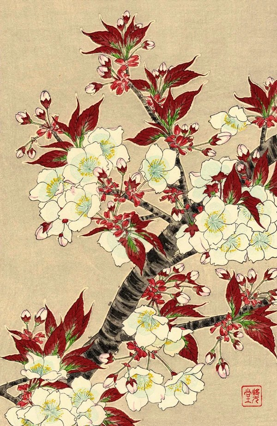 Disegni Di Fiori Giapponesi : disegni, fiori, giapponesi, Fiori, Giapponesi, Stampe, D'arte, Floreale, Blooming