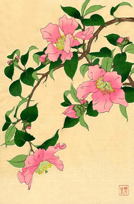 Disegni Di Fiori Giapponesi : disegni, fiori, giapponesi, Stampe, D'arte, Giapponese, Fiori, Botanica, Floreale