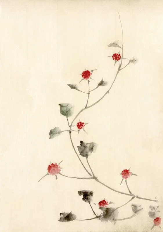 Disegni Di Fiori Giapponesi : disegni, fiori, giapponesi, Giapponese, Disegni, Fiori, Hokusai, Rossi