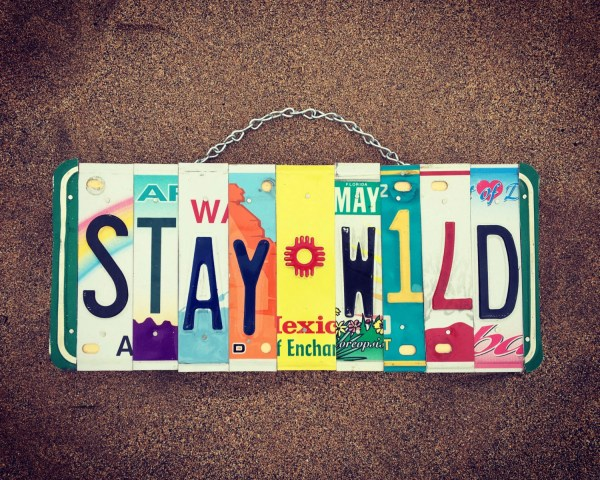 Stay Wild License Plate