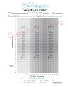 Pregnancy weight gain chart pdf file printable also etsy rh