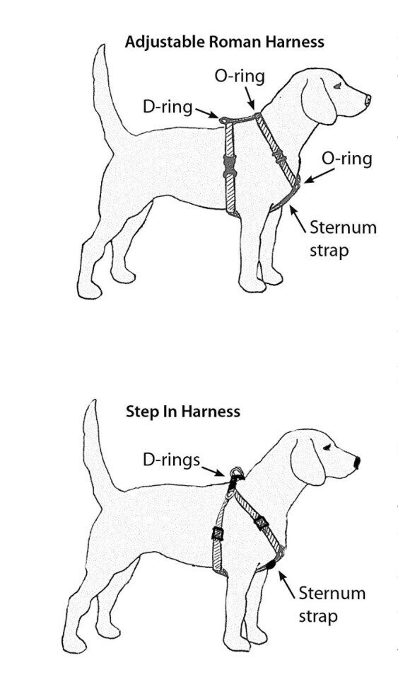 Dog harness, Harness and leash, step in harness, standard