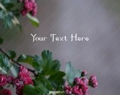 Moody Pink Floral Stock Photo, 4000px by 3000px, instant download