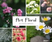 Art Floral Photo Set, 4000px by 3000px, instant stock photo download