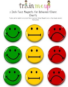 also face magnets for chore charts training behavior etsy rh