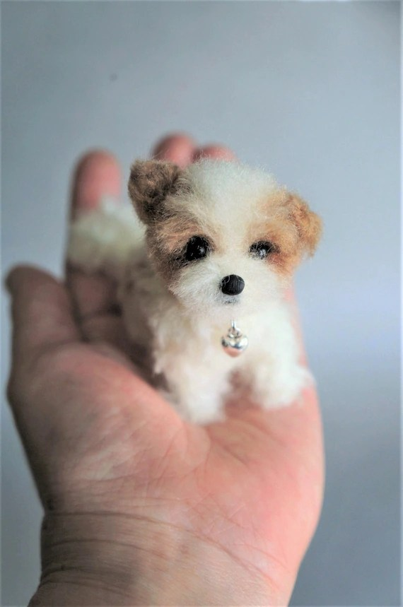 Shorkie Poo Puppies : shorkie, puppies, Assorted, Needle, Felted, Puppies:, Maltese, Shorkie