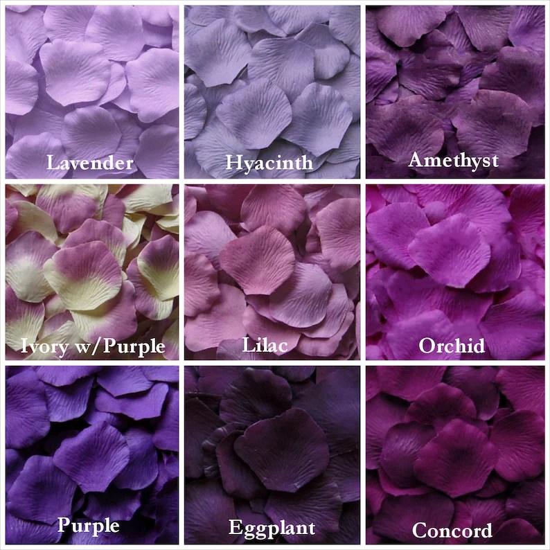 purple rose petals in