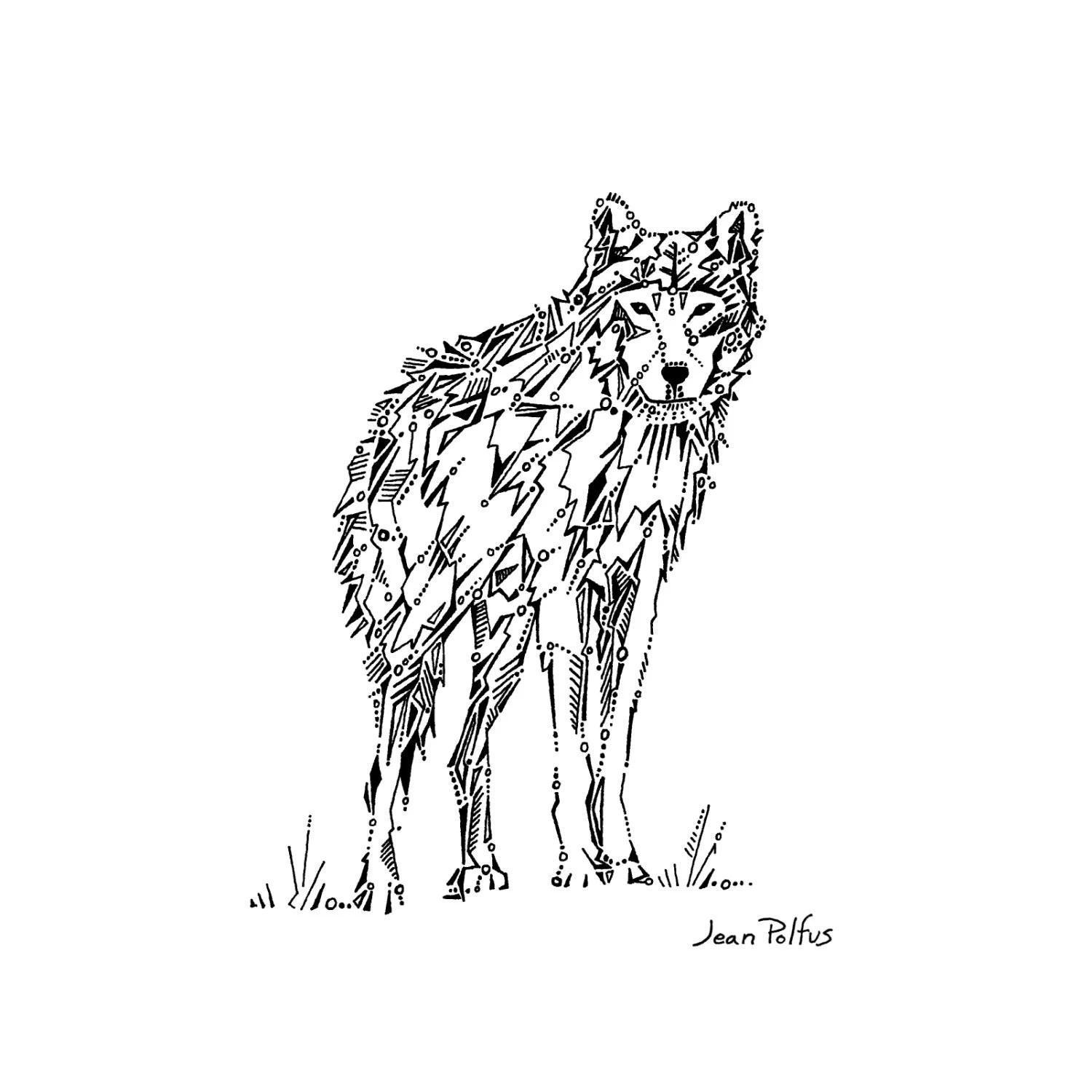 Wolf Drawing Gray Wolf Illustration Timber Wolf Black And