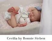 CuStOm Cecilia by Bonnie Sieben (19 Inches + Full Limbs)