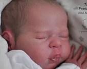 Order Today For FREE Bonus Preemie! Custom Reborn Babies - LE 555 Theo By Irina Kaplanskaya Full Limbs 19 Inches 5-7 lbs