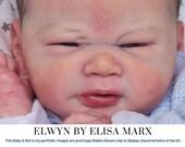 CuStOm Elwyn By Elisa Marx (19 Inches + Full Limbs)