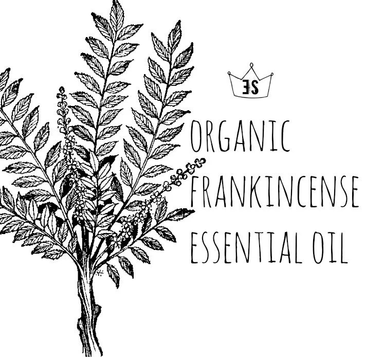 Organic Frankincense Essential Oil Frankincense Oil Pure