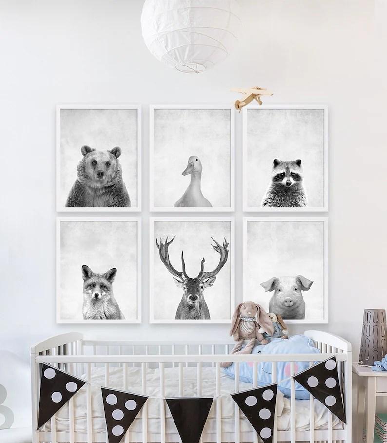 six animal prints boys