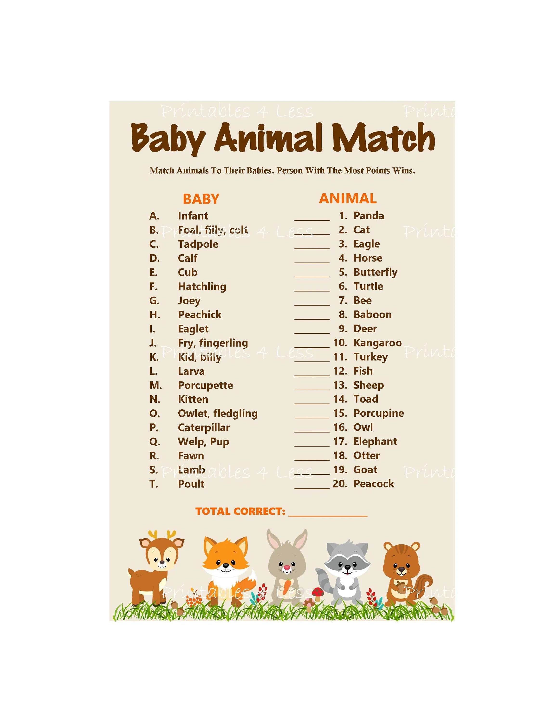 Woodland Baby Animal Match Baby Animals Name Game