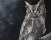 "10x10"" Original Oil Painting - Gray Screech Owl American Owl Painting -  Bird Ornithology Animal Wall Art"