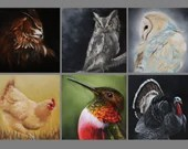"4x4"" Magnet Bird Birds Ornithology Owl Chicken Turkey Hummingbird Art Print Refrigerator Thin Flat Square Magnet"