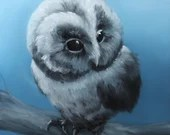 "10x10"" Original Oil Painting - Blue Gray Cute Baby Owl American Owl Painting -  Bird Ornithology Animal Wall Art"