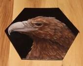 "5-6"" Original Mini Oil Painting Hexagon Flat Panel - Brown White Hawk Bird Animals Animal  - Small Canvas Wall Art"