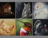 "4x4"" Magnet Bird Birds Ornithology Owl Chicken Turkey Hummingbird Art Print Refrigerator Thin Flat Square Magnet Stocking Stuffers"