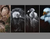 "2x4"" Magnet Bird Birds Ornithology Owls Vultures Vulture Bald Eagle Flamingo Hawk Art Print Refrigerator Thin Flat Magnet Stocking Stuffers"