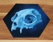 "5-6"" Original Mini Oil Painting Hexagon Flat Panel - Cat Skull Blue Macabre Horror - Small Canvas Wall Art"