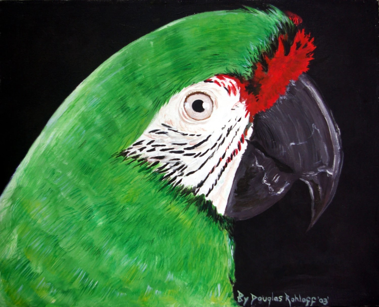 severe macaw oil painting