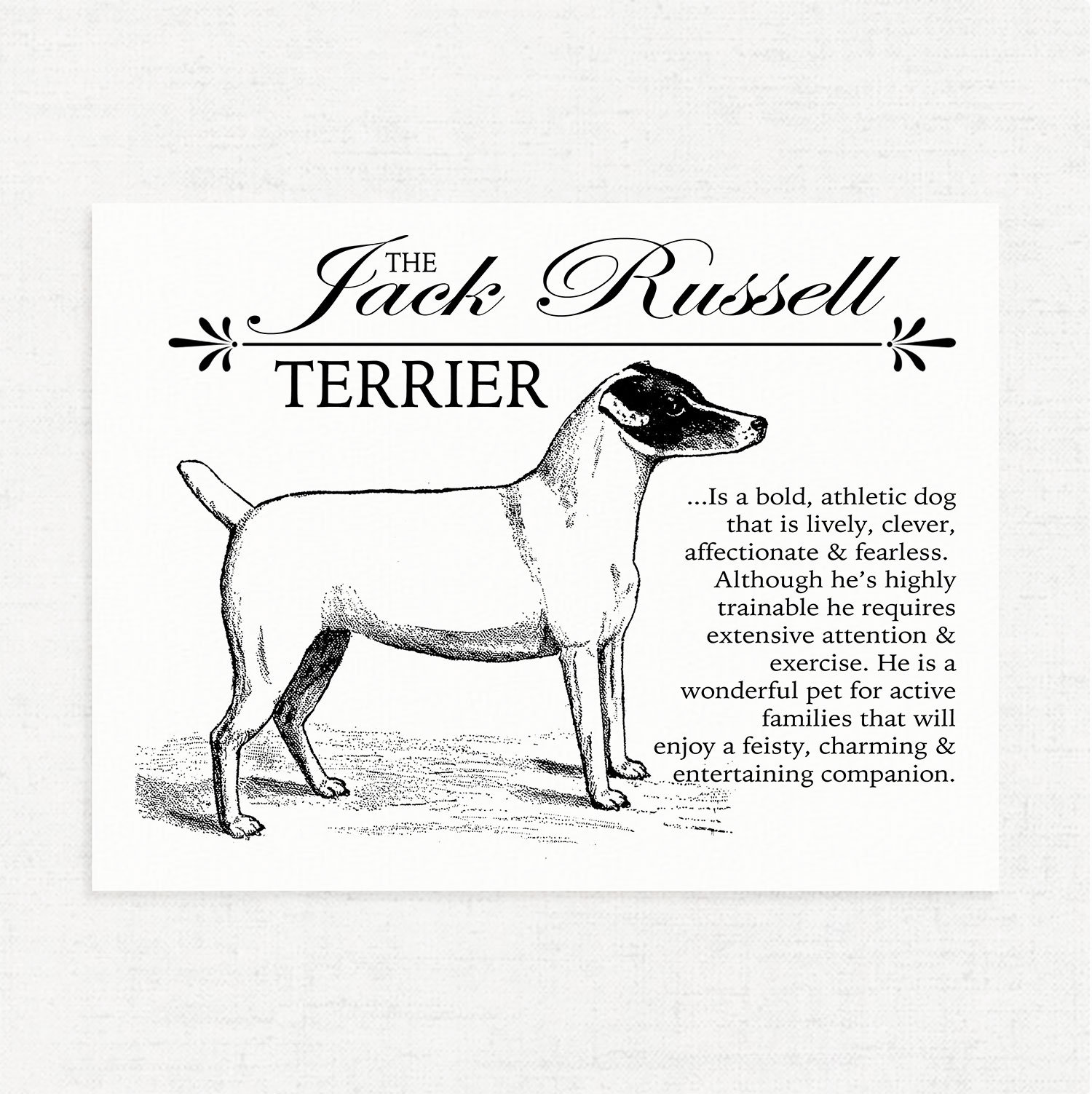 Jack Russell Terrier Jrt Typography Wall Art Print On