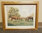 Vintage Framed Allen Brewer Jr Signed Print Mares and Foals 18 x 14