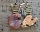Grouping of Vintage Baseball Equipment Gloves Wilson Chest Protector
