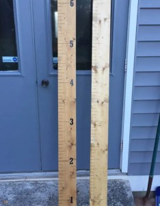Wooden growth chart ruler custom also watch me grow etsy rh