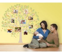 Picture Tree frame wall decal sticker mural vinyl wall art ...