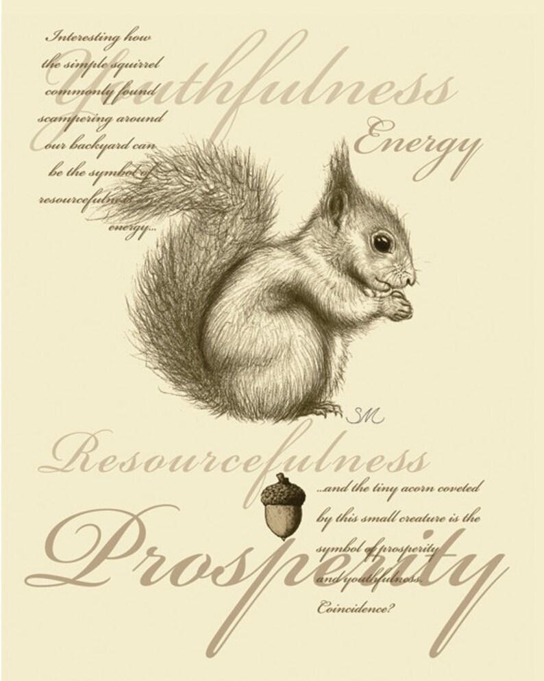 34 squirrel symbolism card