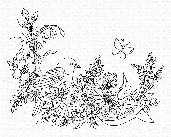 Bird Digi Stamp Adult Coloring Sheet WildFlower Vine Print