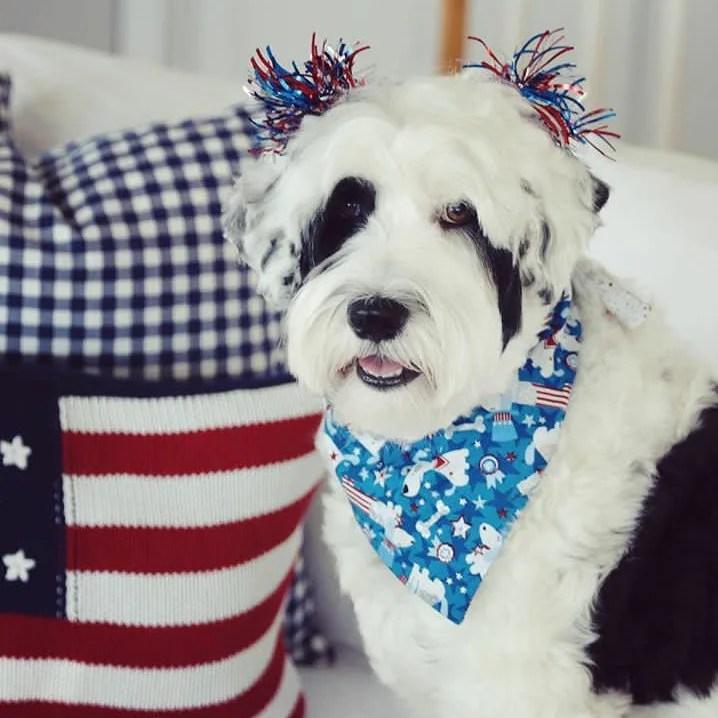personalized patriotic dog bandana
