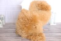 Champagne blonde sheepskin rug | Real Sheepskin rug ...