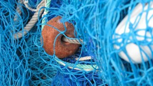 French fishermen no longer have access to Jersey waters