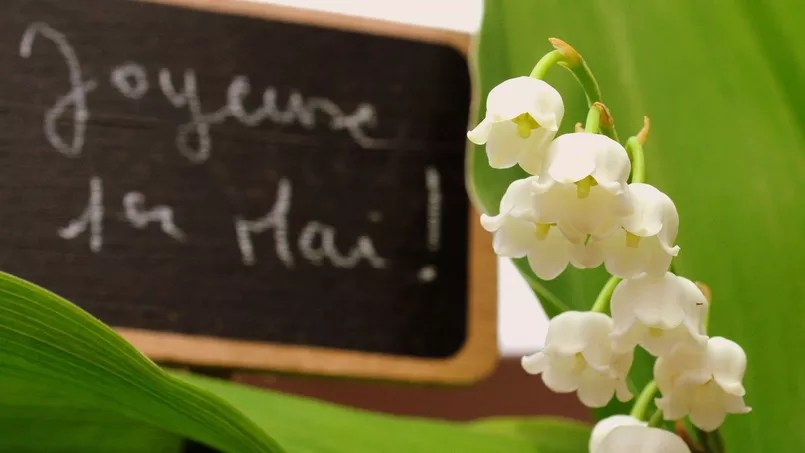 Un brin de muguet, traditionnellement offert le 1er mai. Crédit: Flickr Creative Commons