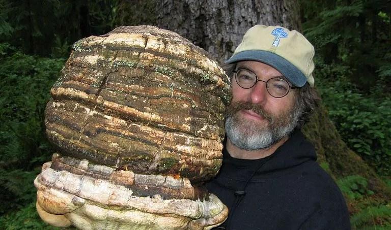 Paul Stamets a découvert un pesticide naturel et efficace
