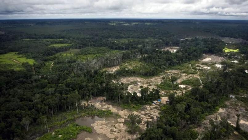 Entre 2001 et 2013, environ 1.680 km2 de forêts tropicales ont été défrichés en Amérique du Sud pour permettre l'exploitation de mines d'or.