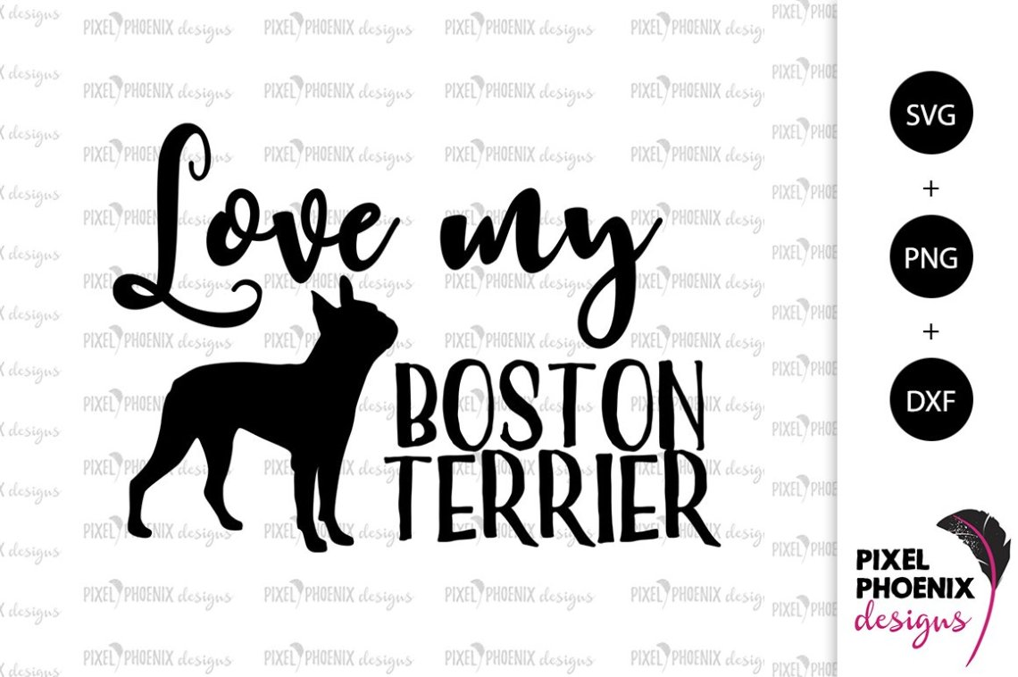 Download Dog SVG Love my Boston Terrier SVG (199273) | Cut Files ...