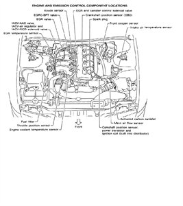 2002 Nissan Altima 2.5 Crankshaft Position Sensor Location